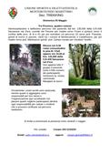 Trekking al Castello di Fosini